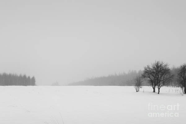 Wall Art - Photograph - Winter Field In Snowy Season by Arletta Cwalina