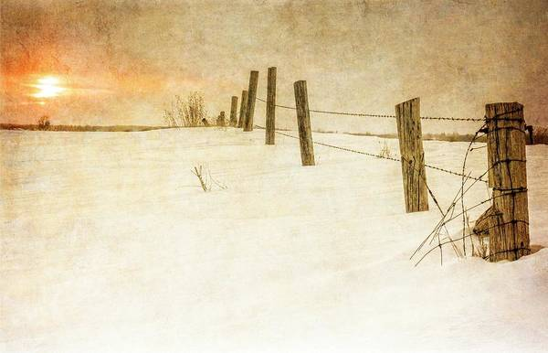 Photograph - Winter Fields by Garvin Hunter