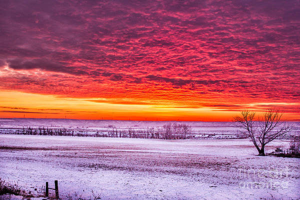 Photograph - Winter Fire Sky Idaho Landscapes By Kaylyn Franks by Omaste Witkowski