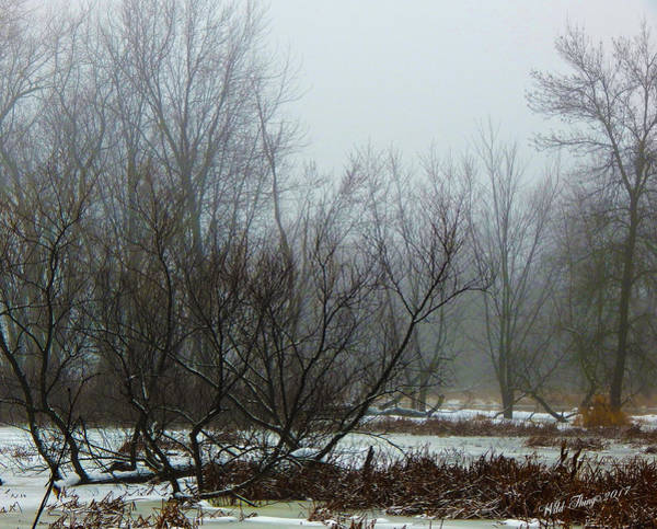 Photograph - Winter Fog by Wild Thing