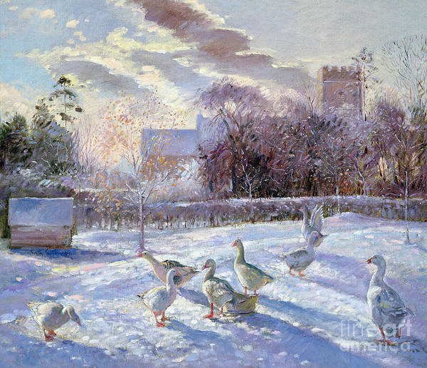 Church Yard Wall Art - Painting - Winter Geese In Church Meadow by Timothy Easton