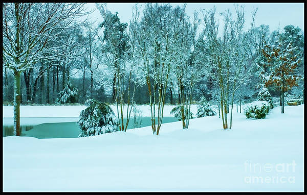 Photograph - Winter Has Arrived by Roberta Byram