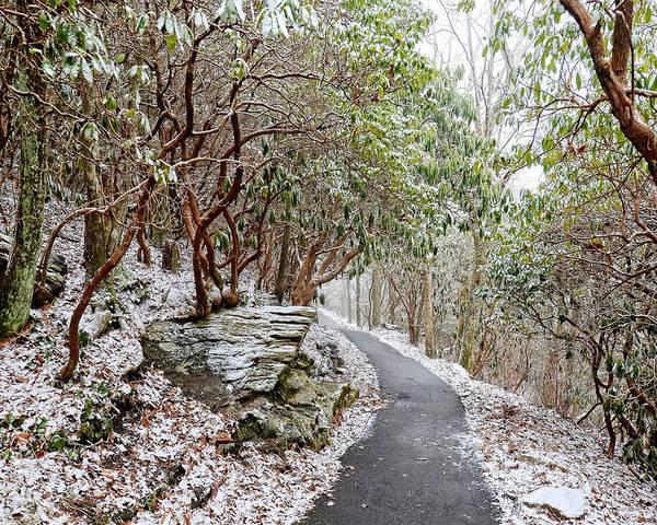Winter Hiking Trail Art Print