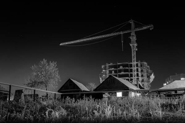 Photograph - Winter Homes The Crane And The Great Plough by John Williams