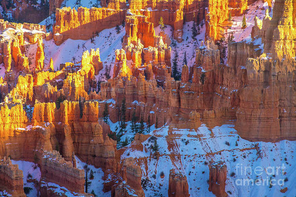 Wall Art - Photograph - Winter In Bryce Canyon by Mike Reid