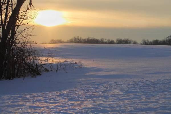 Photograph - Winter In Ohio by Angela Murdock