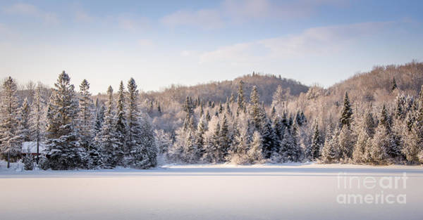 Photograph - Winter In Quebec by Jola Martysz
