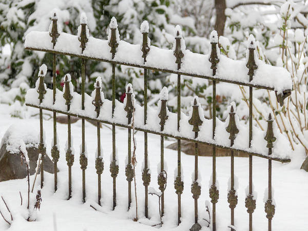 Wall Art - Photograph - Winter In Spring Decorative Fence by Keith Mucha
