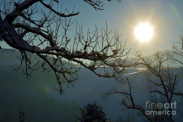 Photograph - Winter In Switzerland - Sunshine by Susanne Van Hulst
