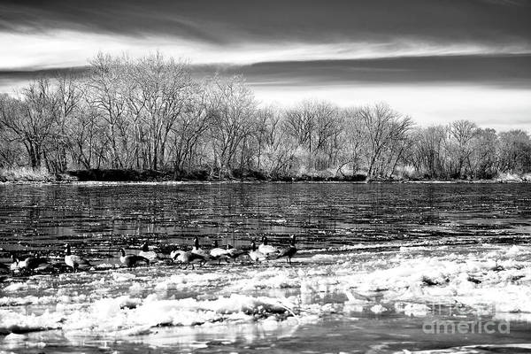 Winter In The Delaware Valley Art Print by John Rizzuto