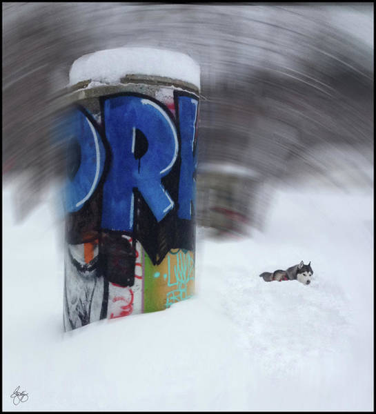 Photograph - Winter In The Skatepark 2 by Wayne King