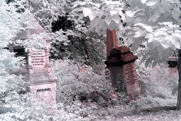 Photograph - Winter Infrared Cemetery by Helga Novelli