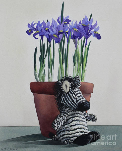 Wall Art - Painting - Winter Irises And Zebra by Christopher Ryland