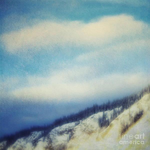Treeline Photograph - Winter Is So Quiet It Needs No Words by Priska Wettstein