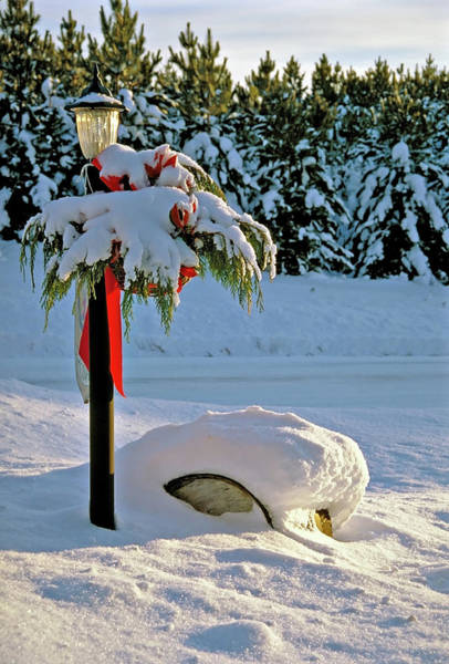 Photograph - Winter Lamp Post In The Snow With Christmas Bough by Peter Pauer