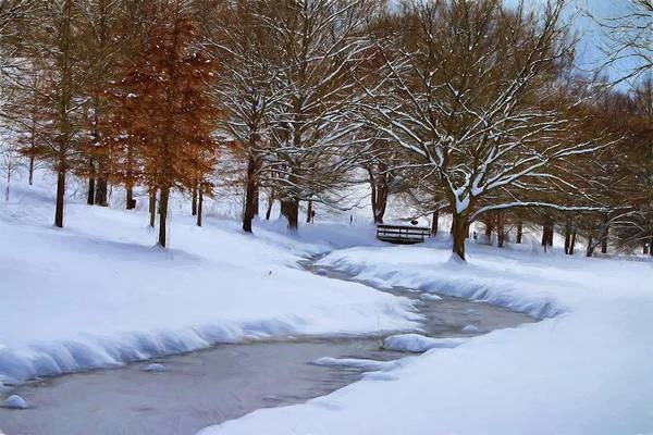 Photograph - Winter Landscape In Snow by Carol Montoya