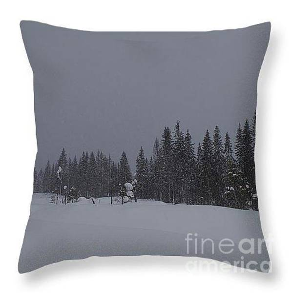 Wall Art - Tapestry - Textile - Winter Landscape Pillow by MJG Products and photo gallery