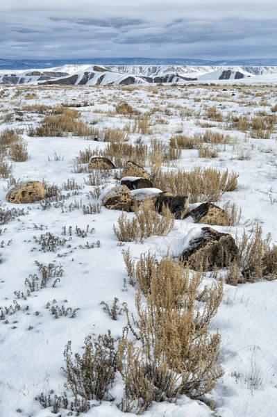 Photograph - Winter Light In The High Desert by Denise Bush