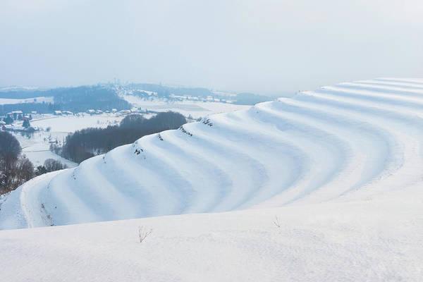 Photograph - Winter Lines by Davor Zerjav