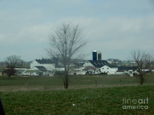 Photograph - Winter Lingers Into April In Amish Country by Christine Clark