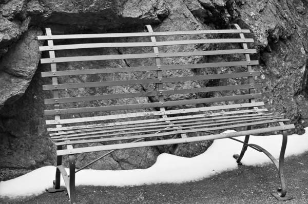 Photograph - Winter Loneliness by Colleen Coccia