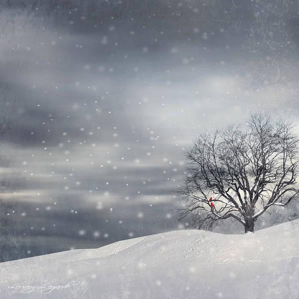 Wall Art - Photograph - Winter by Lourry Legarde