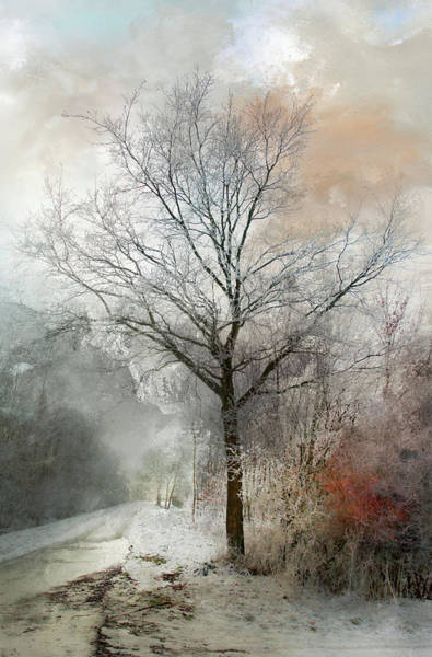 Photograph - Winter Magic by Annie Snel