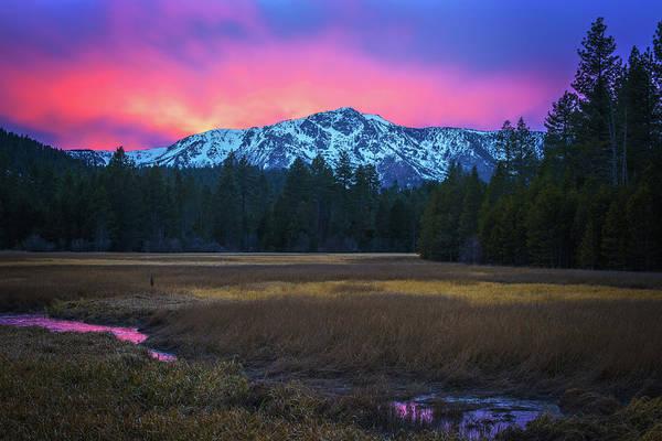 Photograph - Winter Meadow By Brad Scott by Brad Scott