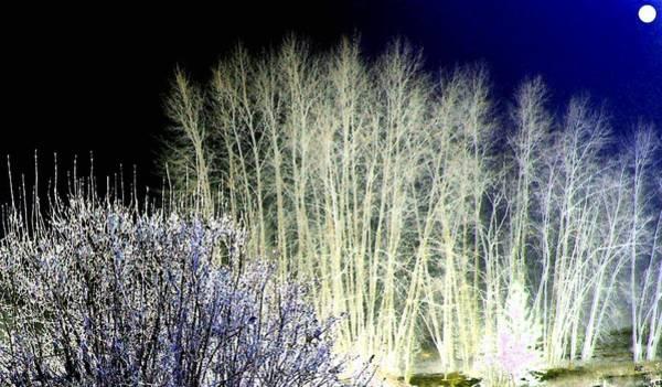 Borden Digital Art - Winter Moonlight by Will Borden