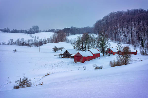 Photograph - Winter Morning At Jenne Farm by Rick Berk