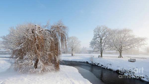 Wall Art - Photograph - Winter Morning At Sinnigton by Janet Burdon