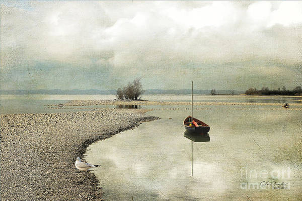Digital Art - Winter Morning By The Lake by Chris Armytage