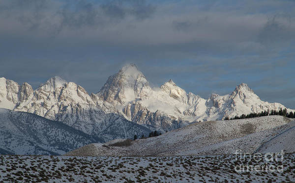 Wall Art - Photograph - Winter Morning - Grand Teton National Park by Sandra Bronstein