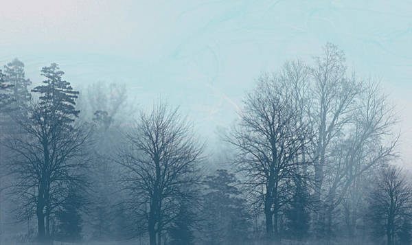 Digital Art - Winter Morning by Milena Ilieva