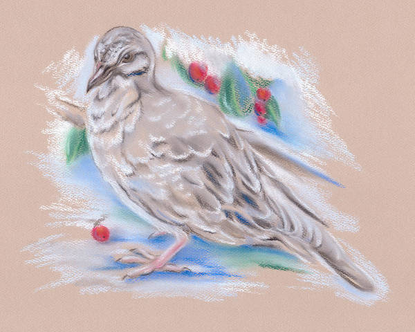 Winter Mourning Dove Art Print