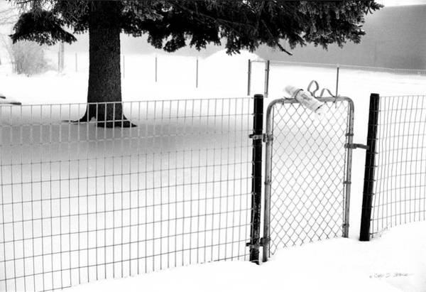 Photograph - Winter News by Craig J Satterlee