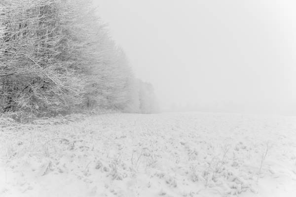 Photograph - Winter Obstruction by Chris Bordeleau