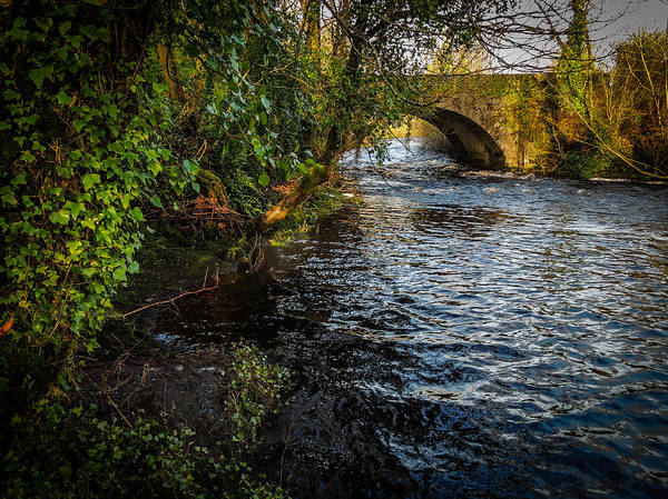 Photograph - Winter On County Clare's Owenslieve River by James Truett