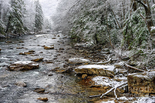 Photograph - Winter On Cranberry River by Thomas R Fletcher
