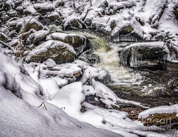 Photograph - Winter On Kitchen Creek by Nick Zelinsky