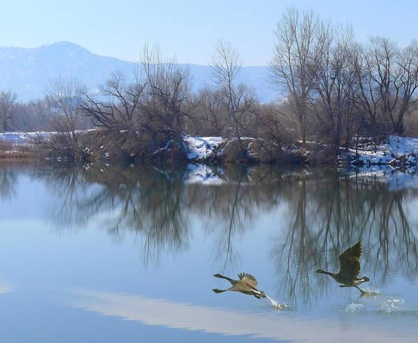 Photograph - Winter On The Pond by Judi Dressler