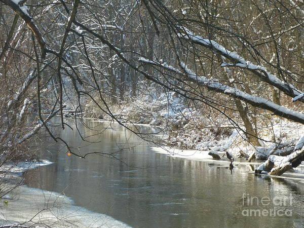 Winter On The Stream Art Print