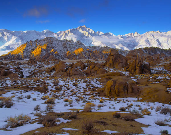 Photograph - Winter On Whitney by Paul Breitkreuz