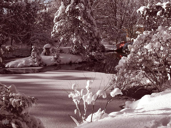 Japanese Pagoda Photograph - Winter Pagoda by Garth Glazier