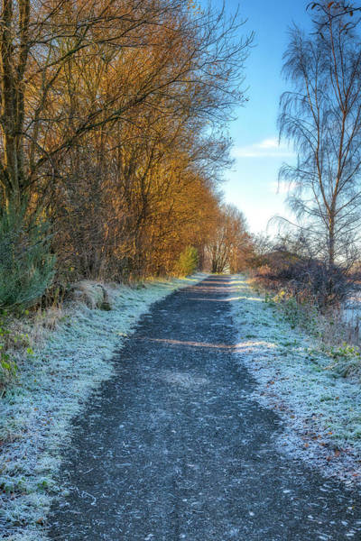 Photograph - Winter Path In Scotland by Jeremy Lavender Photography