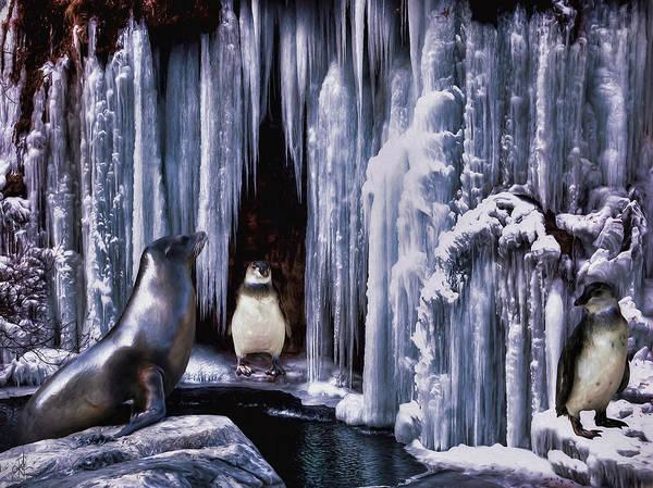 Photograph - Winter Playground by Pennie McCracken