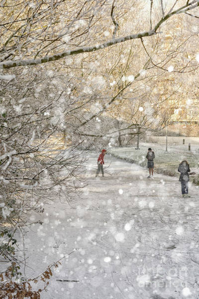 Wall Art - Photograph - Winter Pleasures by Patricia Hofmeester