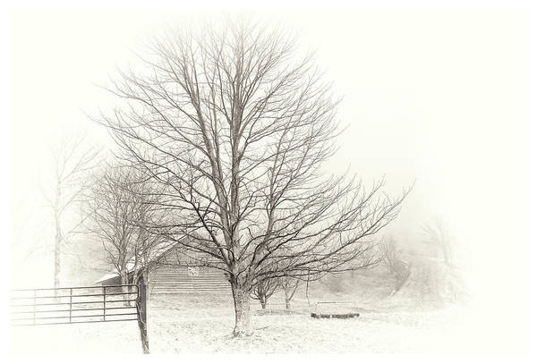 Photograph - Winter Ranch by Grace Dillon