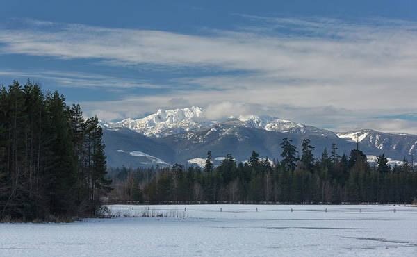 Photograph - Winter by Randy Hall