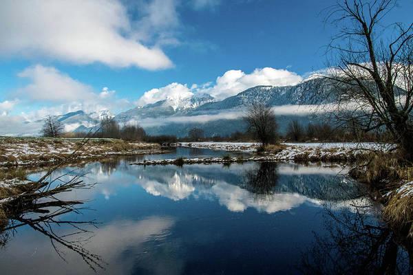 Alouette Wall Art - Photograph - Winter Reflection by Michael Potts